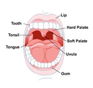 آسیب های دهانی